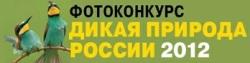 Конкурс фотографий «Дикая природа России-2012»