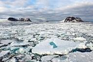 Конкурс «Арктика – притягательная загадка»