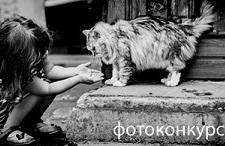 Фотоконкурс «Мы с тобой одной крови»