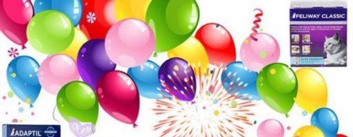 Конкурс «В честь 20-летия Севы дарим подарки!»