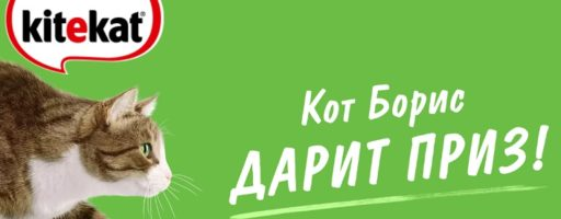 Акция Kitekat: «Кот Борис дарит приз»