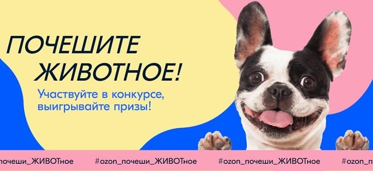 """Конкурс """"Ozon_почеши_ЖИВОТное"""""""