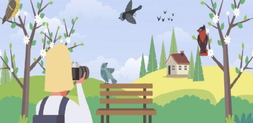 Конкурс наблюдений за птицами «Чудо в перьях»
