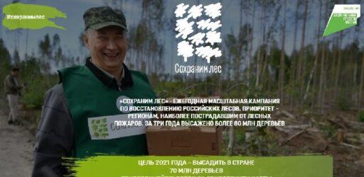 Ежегодная масштабная кампания по восстановлению российских лесов «СОХРАНИМ ЛЕС»