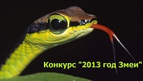 konkurs-2013-god-zmei
