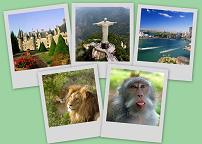 Туристический конкурс «Деньги за отзывы»