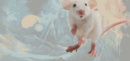 Литературно-философский конкурс «Братство Белой Мыши»