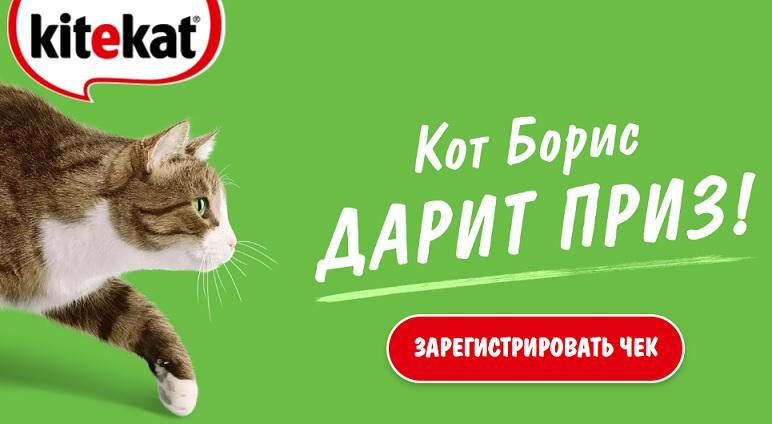 кот борис дарит приз