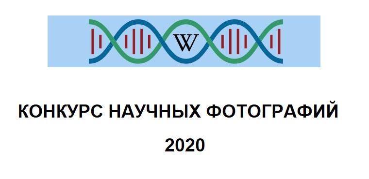 Конкурс научных фотографий 2020
